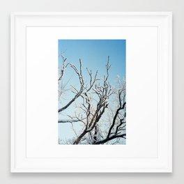February II Framed Art Print
