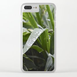Water Droplets on Iris Leaves Clear iPhone Case