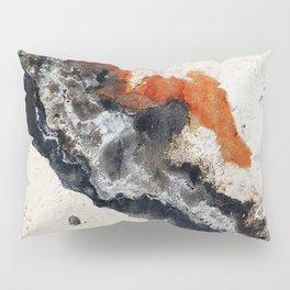 Peeling Paint Pillow Sham