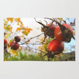 Autumn Rosehip Rug
