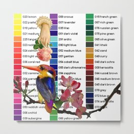 Colour Chart with Kingfisher Metal Print