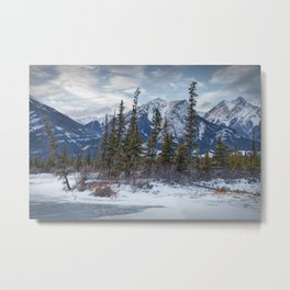 Pines at the edge of a lake in Jasper National Park Metal Print