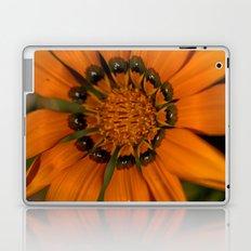 Pumpkin Petals Laptop & iPad Skin