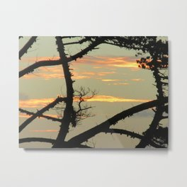 SUNSET BETWEEN A TREE Metal Print