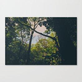 A frame within a frame Canvas Print