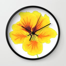 Indian cress flower - illustration Wall Clock