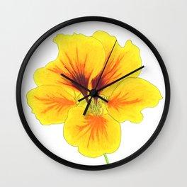 Indian cress flower - illustration Wall Clock