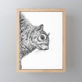 Squirrel! Framed Mini Art Print