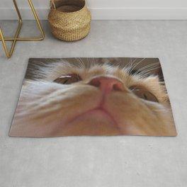 Funny Cute Cat Macro Eyes Rug