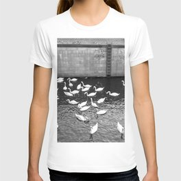 Swans in Berlin T-shirt