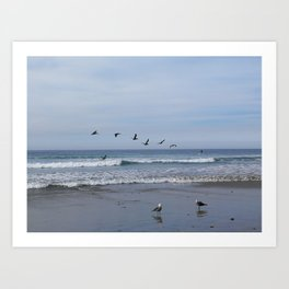 Flight of the Sea Birds Art Print