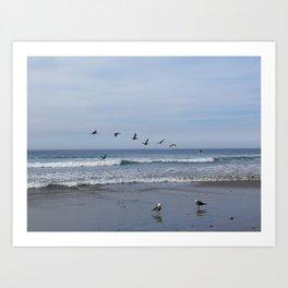 Flight of the Sea Birds Art Print