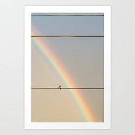 songbird preening under a rainbow (vertical Art Print