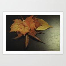 autumn arranged Art Print