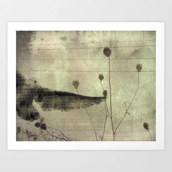 Paper Seagull Art Print