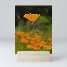 Tall Poppy Mini Art Print