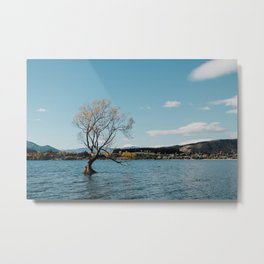 Tree in the lake Metal Print