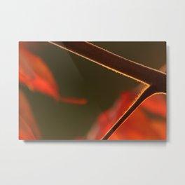 Out on a Limb3 Metal Print