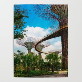 Supertrees, Gardens by the Bay Poster