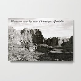 Wilderness Metal Print