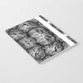 PIÑAPLE b&w Notebook