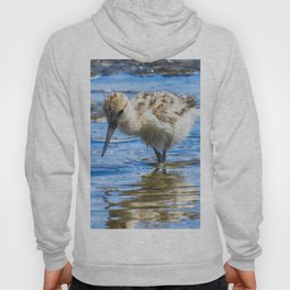 Black Necked Stilt Chick Hoody