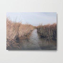 BLUE MOON / Alviso, California Metal Print