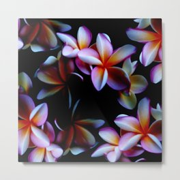 Flowers With a Black Background Metal Print