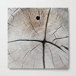 dry wood branch Metal Print