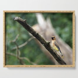 Perching Waxwing Serving Tray