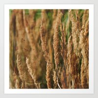 grass Art Prints featuring grass by Artemio Studio