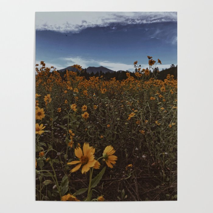 Wildflowers Forever Poster