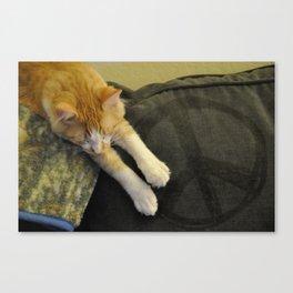 Peaceful Cat Canvas Print