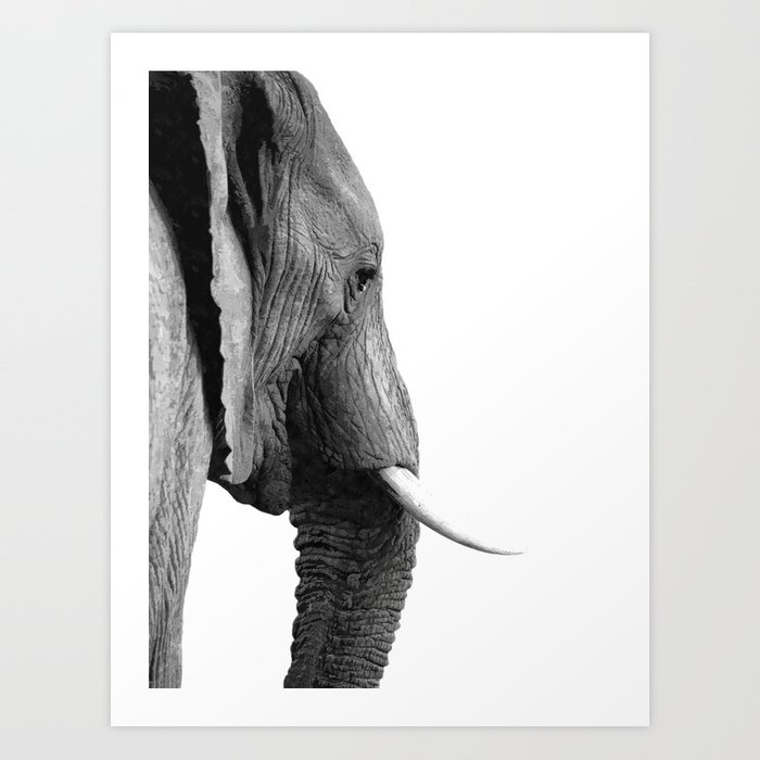 Black and white elephant portrait Art Print