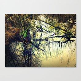 Reflection #2 Canvas Print