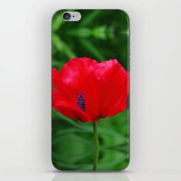 Red oriental poppy flower iPhone Skin