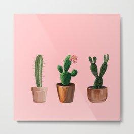 Three Cacti On Pink Background Metal Print