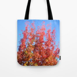 Fallbeauty/Colors in the sky Tote Bag