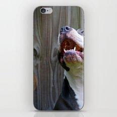 Pit-iful Smile iPhone & iPod Skin