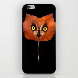 Autumn Owl-3 iPhone Skin