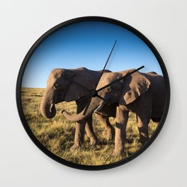 Two happy elephants walking together in African Savannah at sunset Wall Clock