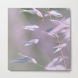 wild oats swaying in violet Metal Print