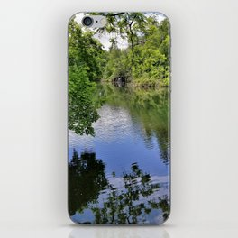 Calm Forestry iPhone Skin