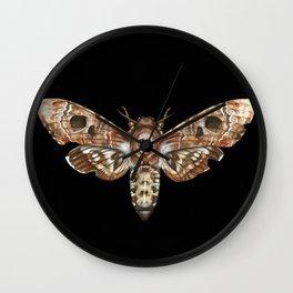 Death's-Head Hawkmoth Wall Clock