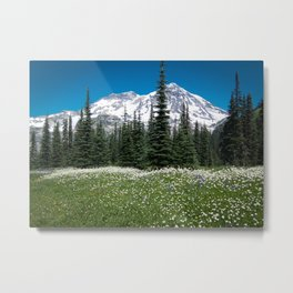 Mt. Rainier Wildflowers 2017 Metal Print