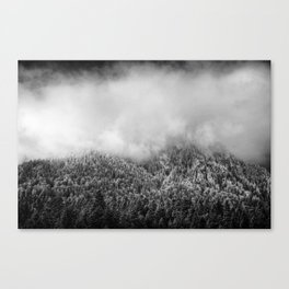 The Neverending Forest Canvas Print