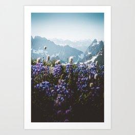 Mountain Meadows Art Print