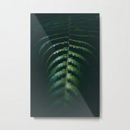 Nature Leaf Metal Print