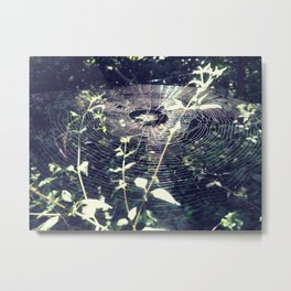 Spider web forest light Metal Print