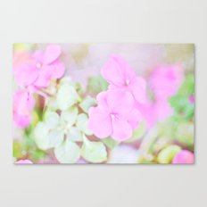 Soft Pinkness Texture Canvas Print